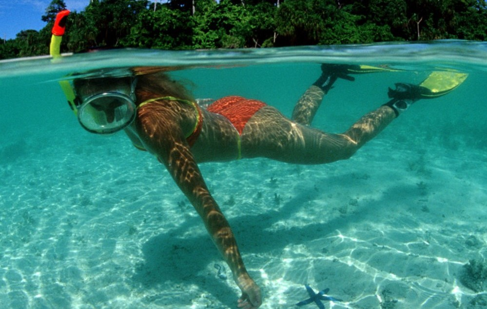 Boat tour, sunset cruise, sightseeing trip, snorkeling to shell island pcb florida
