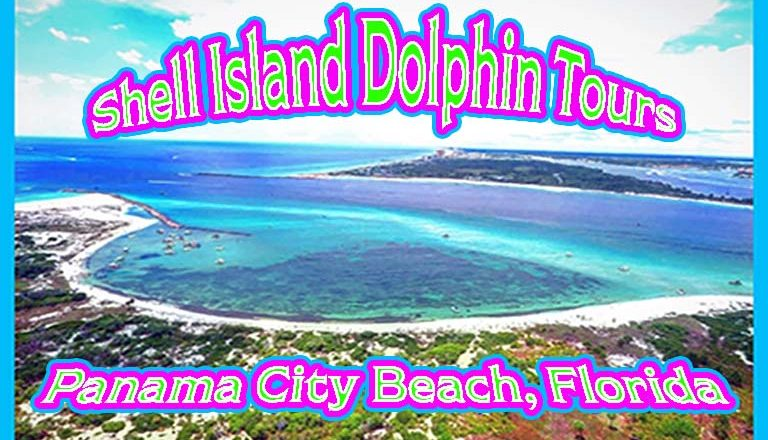 Shell island dolphin tours