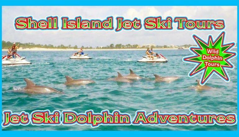 Jet ski dolphin tours shell island
