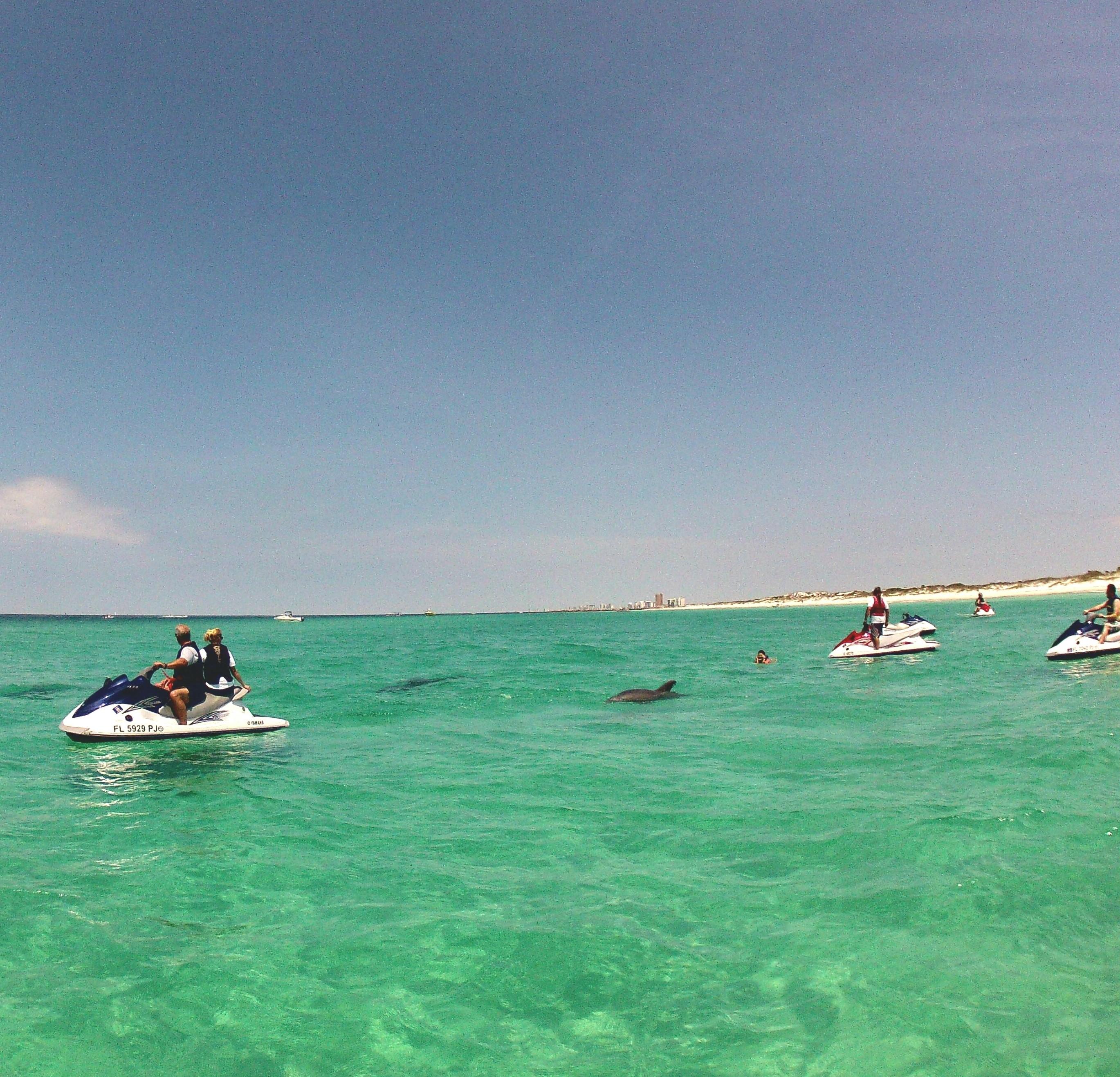 jet ski dolphin tour swim with